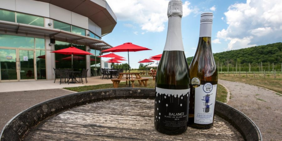 Teaching Winery whites strike gold in national competition