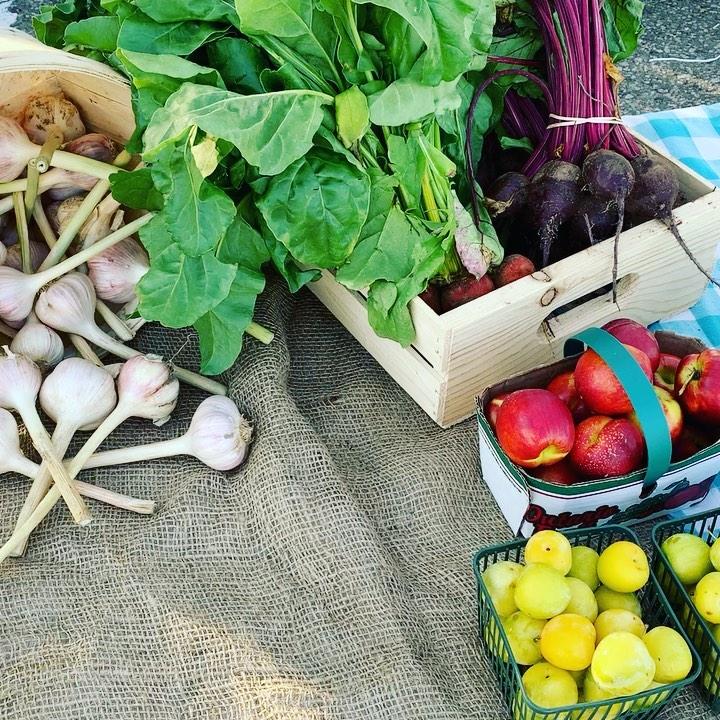 Meet The Vendors: Olsen Family Farms