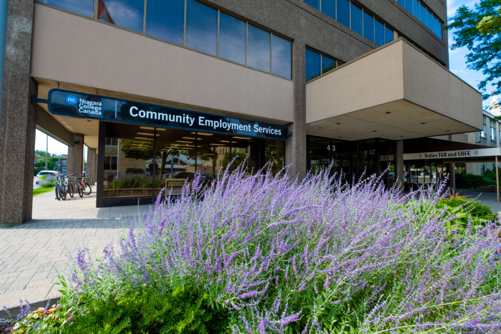 Niagara College, TD Bank Group partner to support Niagara's aspiring entrepreneurs