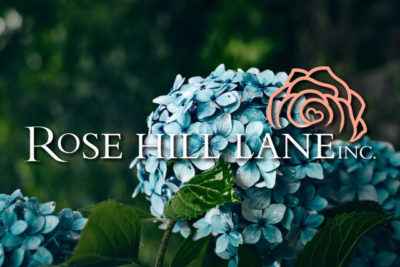 Rosehill Lane: Lilly's Story