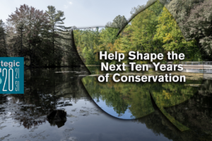 Help Shape the Next Ten Years of Conservation
