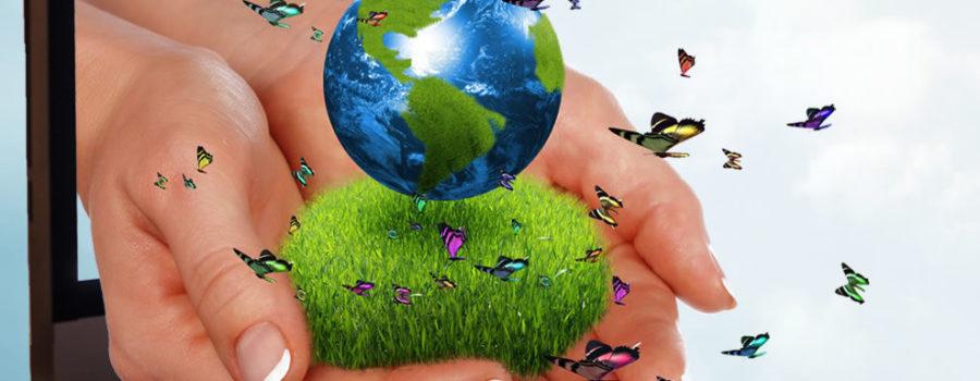 Our Planet, Our Future: Pelham Art Festival 2021 Theme