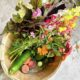 Celebrating Local: Weekly CSA Basket and U-Pick Flowers