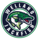 Welland Jackfish Call On Fans For Voting Support