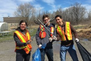 Community invited to participate in Niagara's Virtual Fall Cleanup/ Bioblitz Sept. 25-Oct. 4