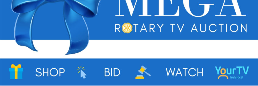 Where The Money Goes: MEGA Rotary TV Auction