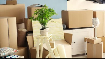 Urge To Purge Inc. –  Your Local Decluttering, Cleaning and Staging Experts