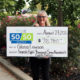 St. Catharines resident, Gloria Lawson wins $78,780 in the Niagara Health 50/50 Lottery