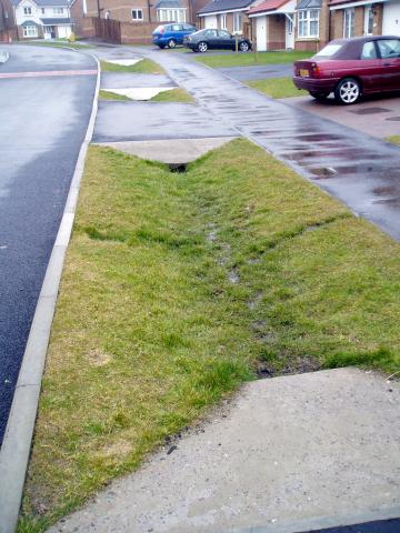Swales – 'The Silent Stormwater Sweepers'