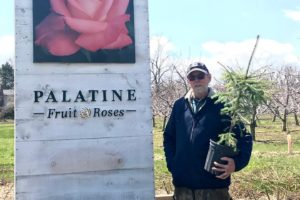 Palatine Fruit and Roses 'Earth Day is Everyday' Local Tree Giveaway!