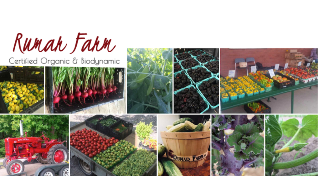 BLUEBERRIES! This Week at Rumar Farm's Online Store