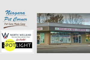 North Welland BIA Spotlight: Niagara Pet Corner