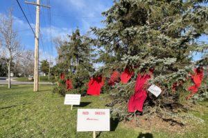 The Red Dress Campaign #16DaysofActivism