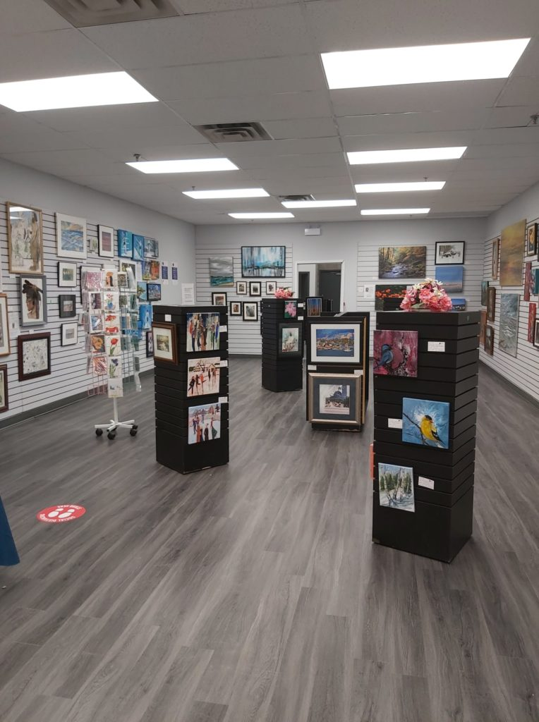 Visual Artists of Welland Shines Spotlight on Student Artists