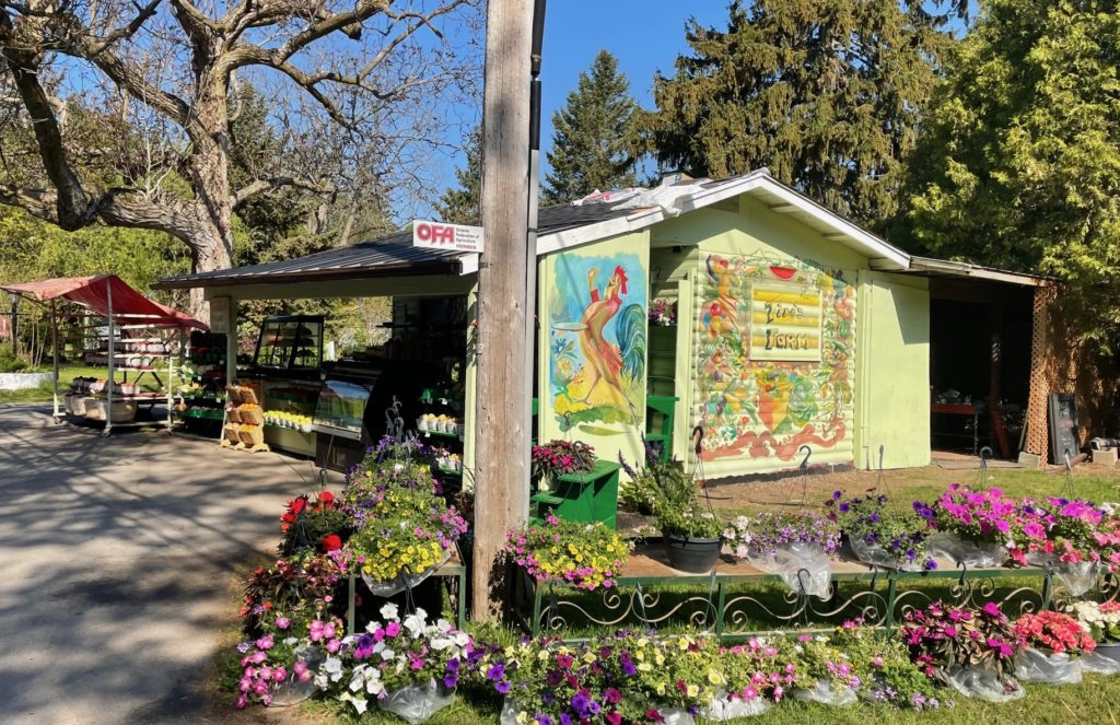 New at Tim's Farm – Murals, Fresh Baked Bread and Desserts
